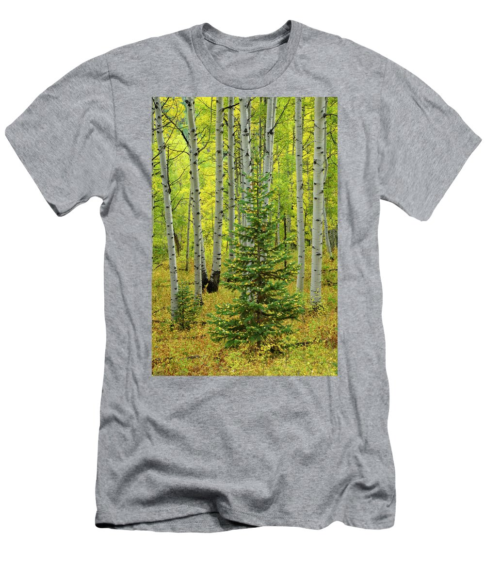 North America Men's T-Shirt (Athletic Fit) featuring the photograph Aspen Christmas Tree by Christian Heeb