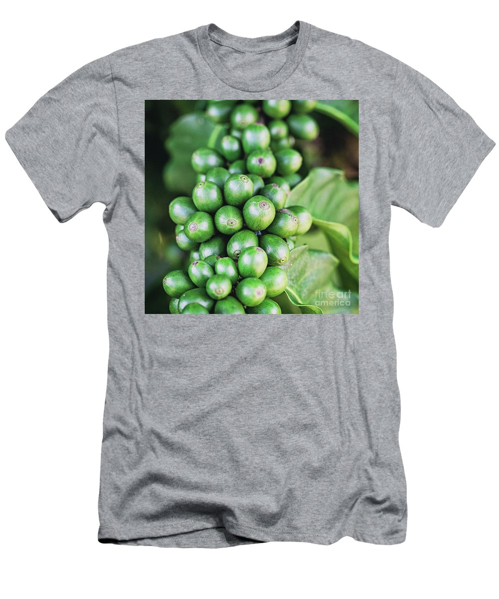 Bean Men's T-Shirt (Athletic Fit) featuring the photograph Coffee Berries by Scott Pellegrin