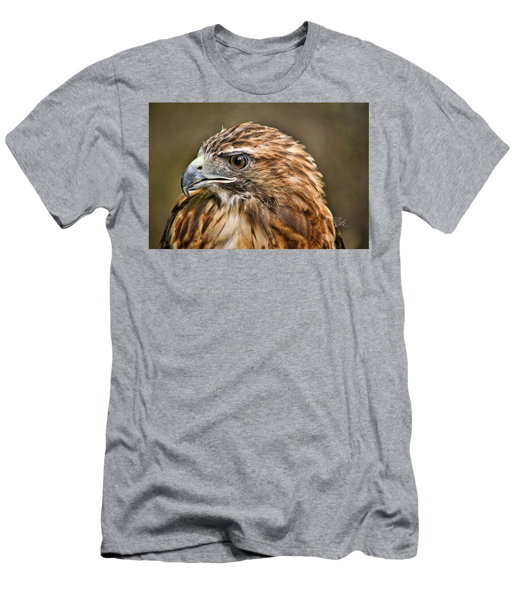 Hawk Men's T-Shirt (Athletic Fit) featuring the photograph Red-tailed Hawk by Meta Gatschenberger