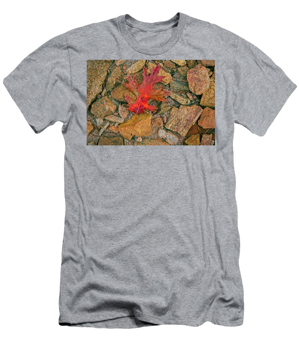 Red Men's T-Shirt (Athletic Fit) featuring the photograph One Leaf by Sandra Burm