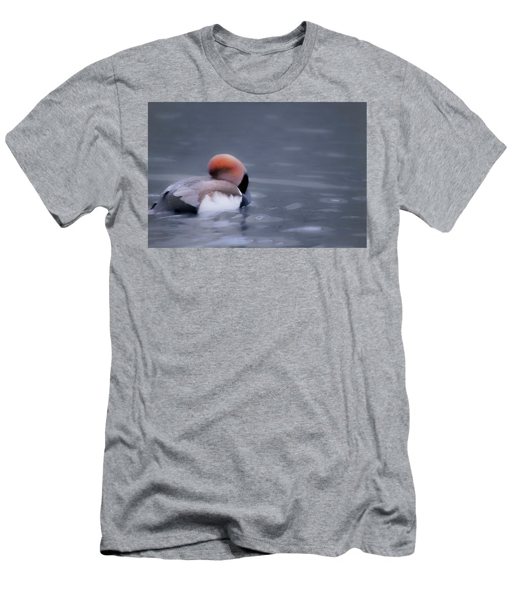 Duck Men's T-Shirt (Athletic Fit) featuring the photograph Red Crested Pochard by Valerie Kingston