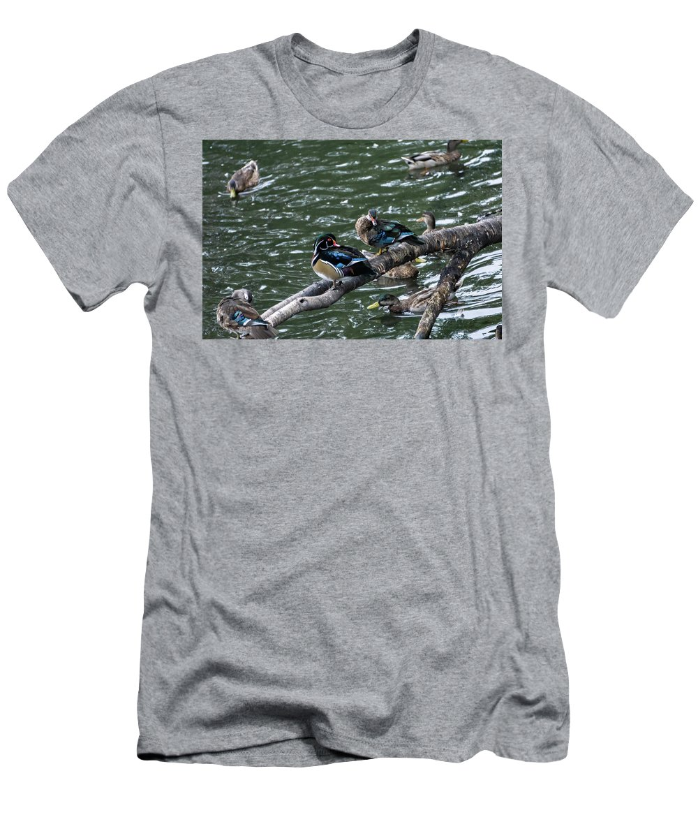 Swimming Photographs T-Shirts