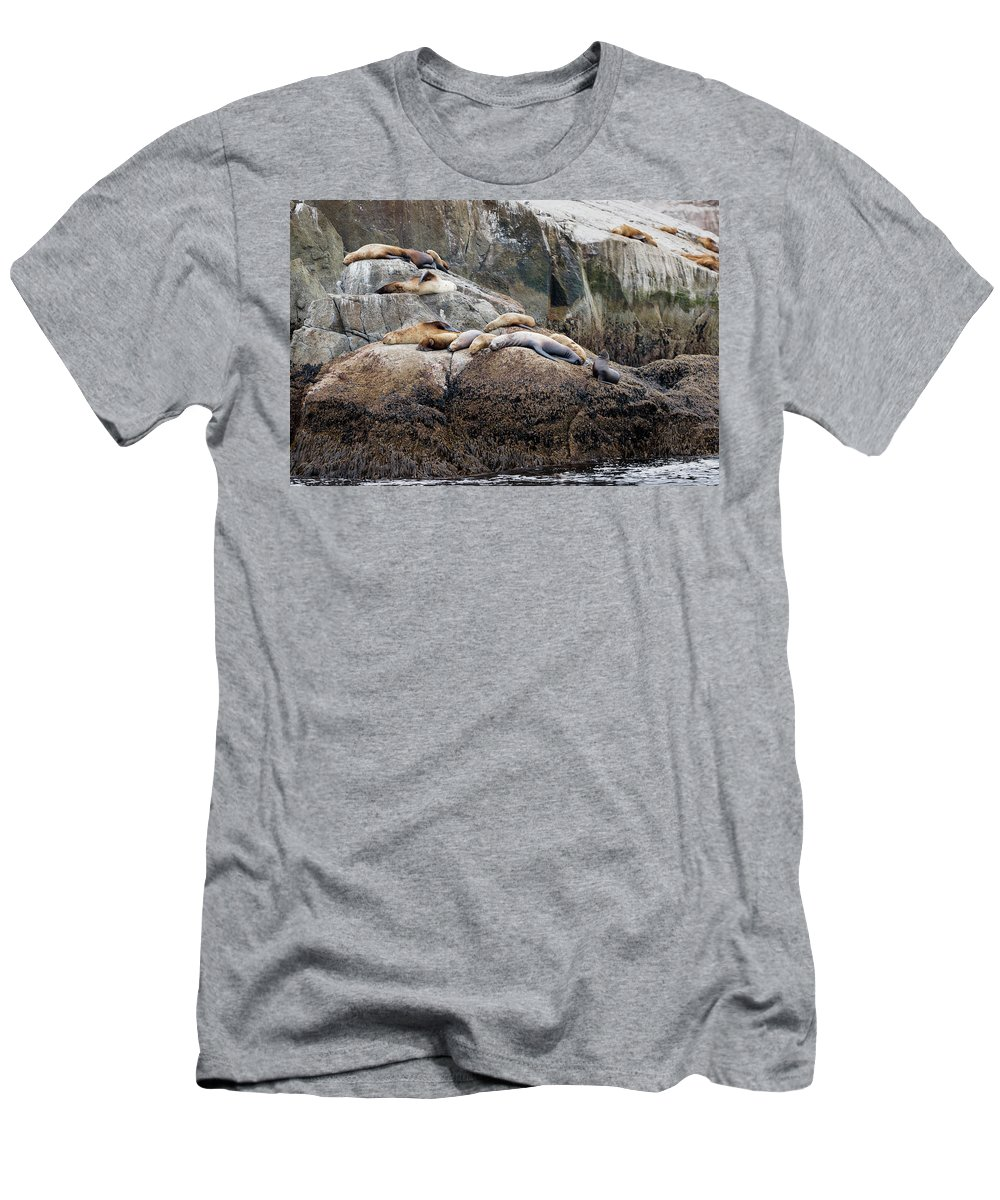 Adventure Men's T-Shirt (Athletic Fit) featuring the photograph Sea Lions Sleeping On Rock by Scott Slone