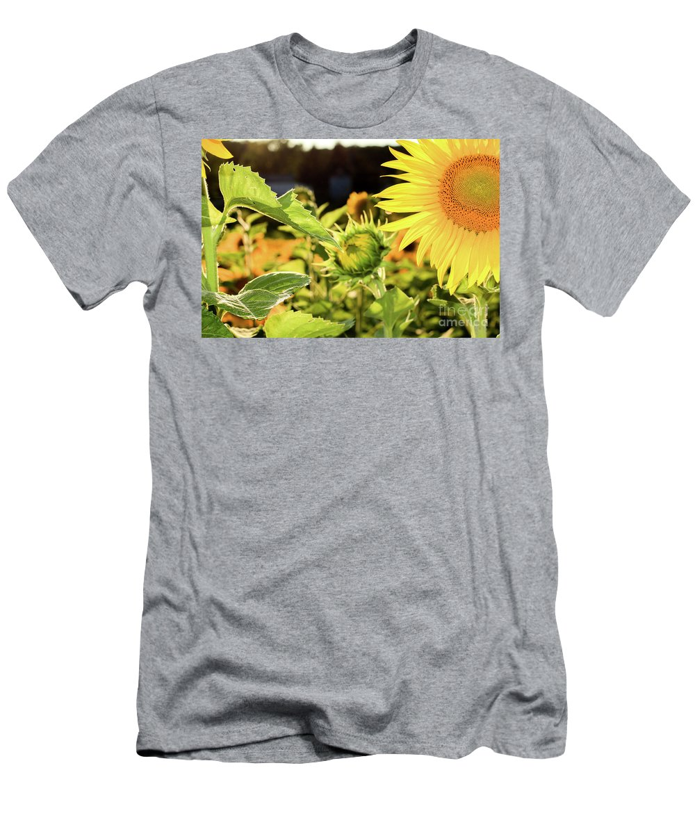 Sunflower Men's T-Shirt (Athletic Fit) featuring the photograph Sunflower Bloom by Martina Schneeberg-Chrisien