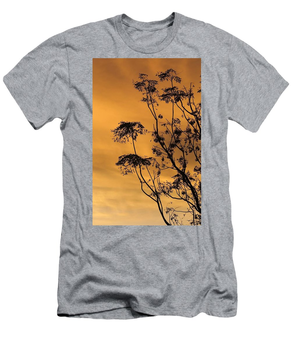 Tree Men's T-Shirt (Athletic Fit) featuring the photograph Sunrise Silhouette by Brent Short