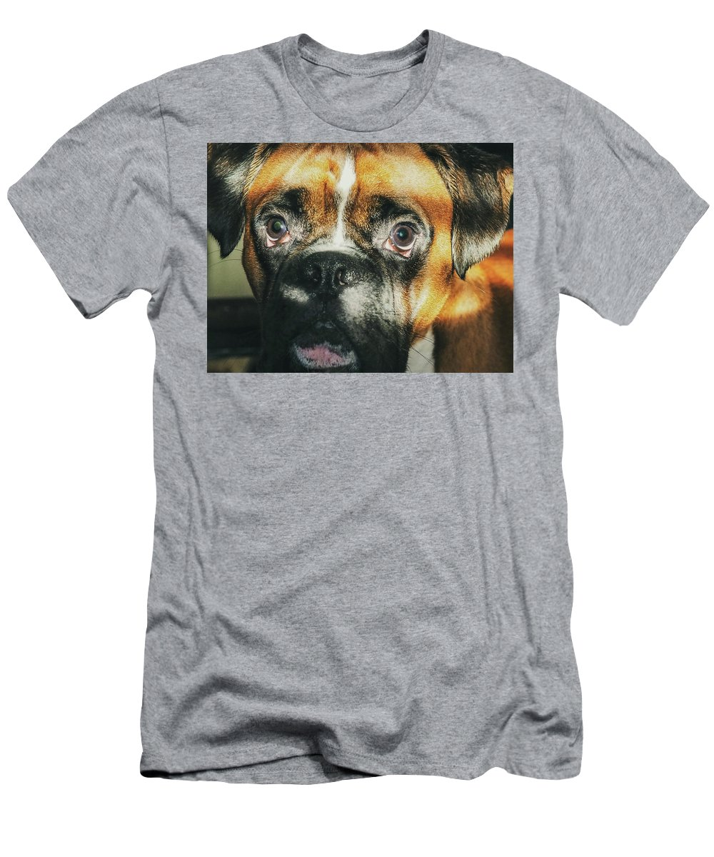Dog T-Shirt featuring the photograph Where'd Everybody Go by CWinslow Shafer