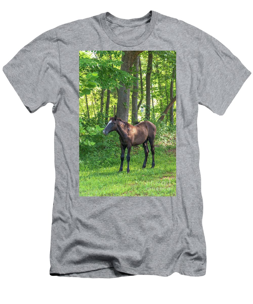 Horse Men's T-Shirt (Athletic Fit) featuring the photograph Young Brown Colt by Terri Morris