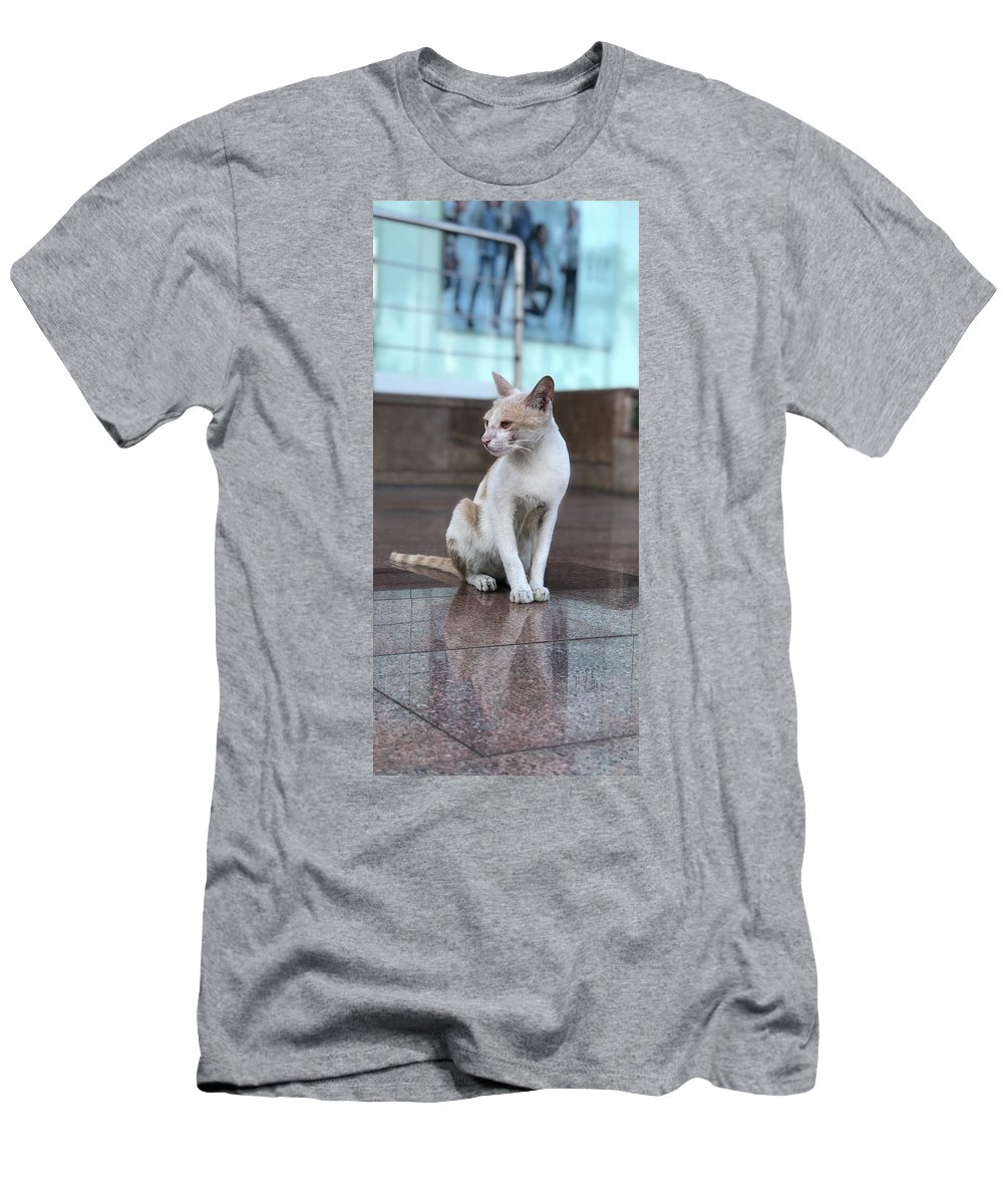 Wallpaper T-Shirt featuring the photograph Cat Sitting On Marble Floor by Prashant Dalal