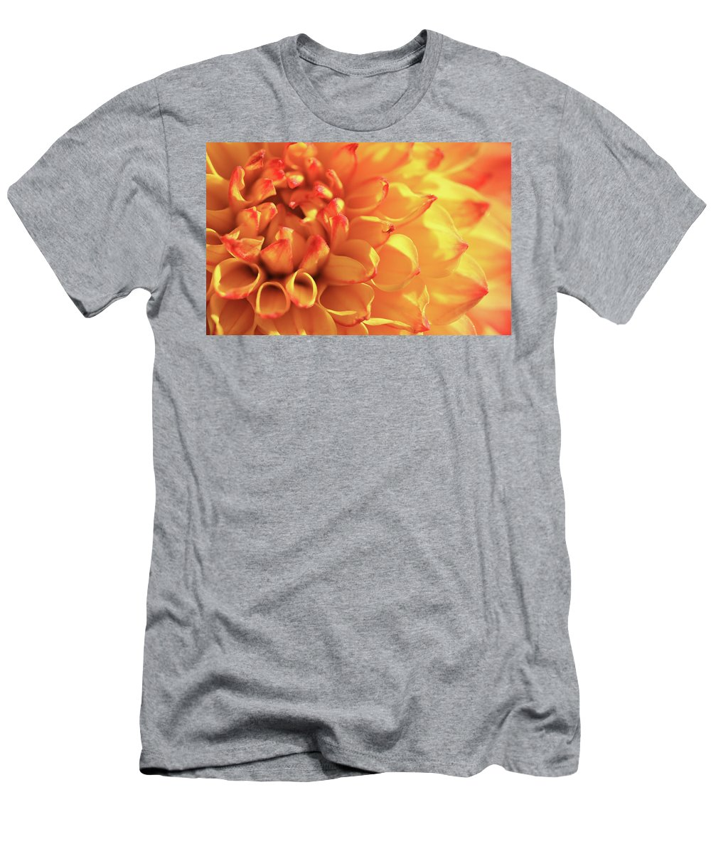 Mirella Dahlia T-Shirt featuring the photograph Orange Mirella Dahlia Flower by Trevor Slauenwhite