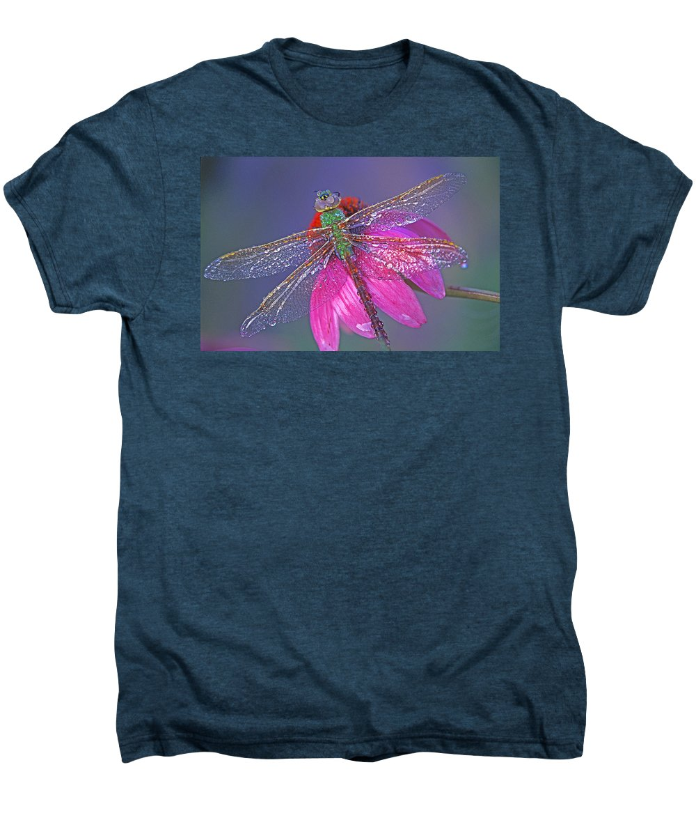 Dew Covered Dragonfly Rests On Purple Cone Flower Men's Premium T-Shirt featuring the photograph Dreaming Dragon by Bill Morgenstern