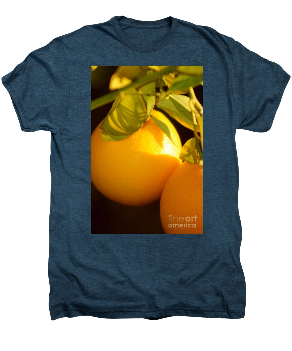 Fruit Men's Premium T-Shirt featuring the photograph Winter Fruit by Nadine Rippelmeyer