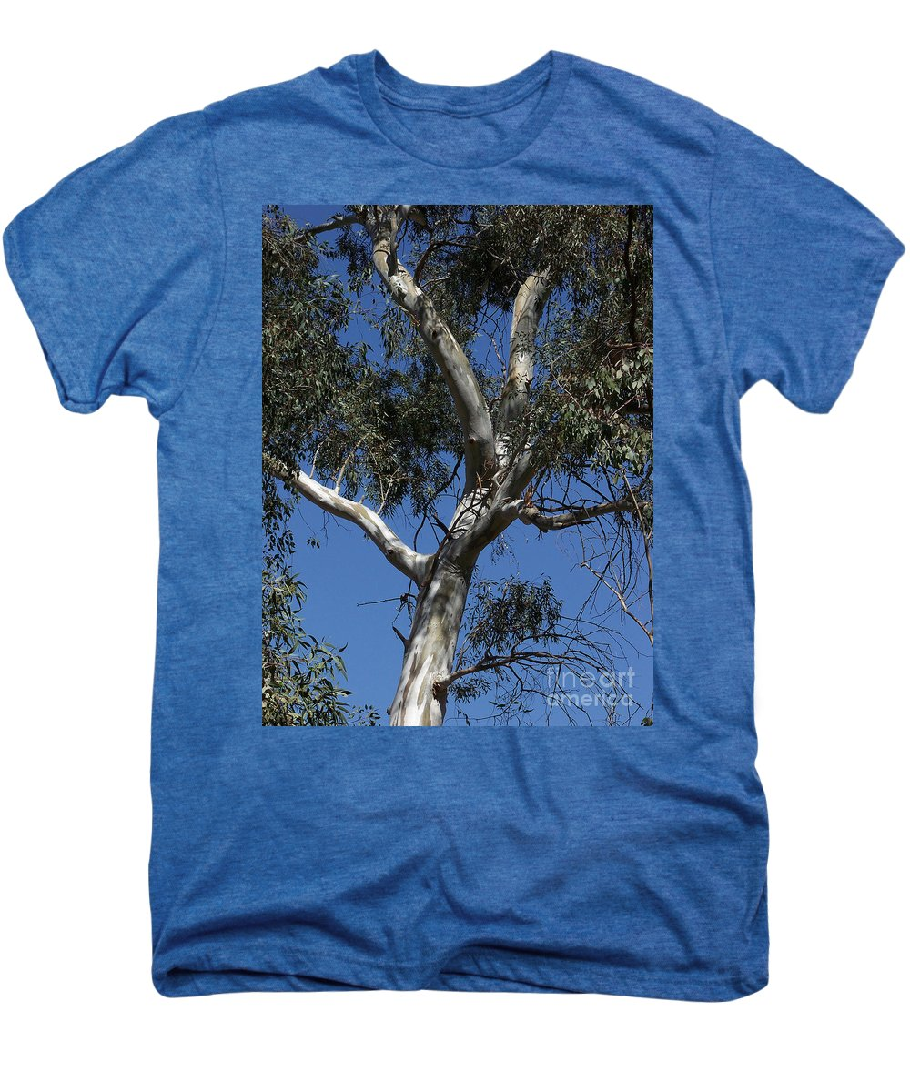 Trees Men's Premium T-Shirt featuring the photograph Eucalyptus by Kathy McClure