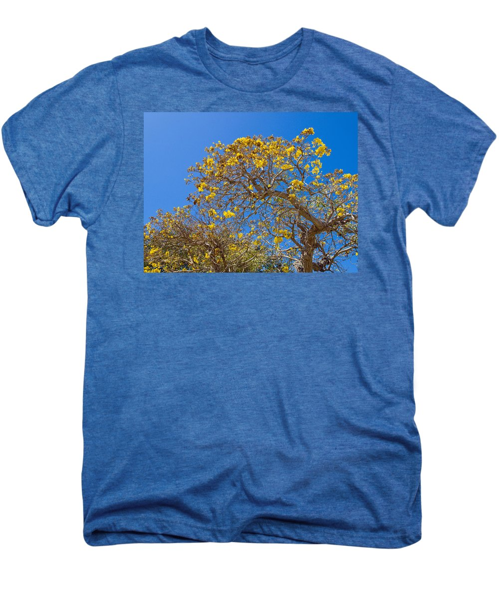 Florida; Tree; Plant; Flower; Flowering; Blossom; Blossoming; Jerusalem; Thorn; Possom; Mexican; Pal Men's Premium T-Shirt featuring the photograph Jerusalem Thorn Tree by Allan Hughes