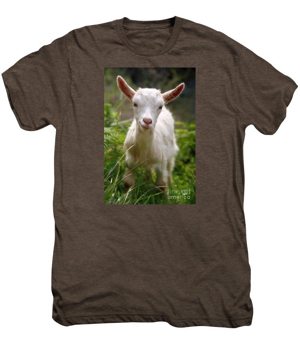 Animals Men's Premium T-Shirt featuring the photograph Baby Goat by Gaspar Avila