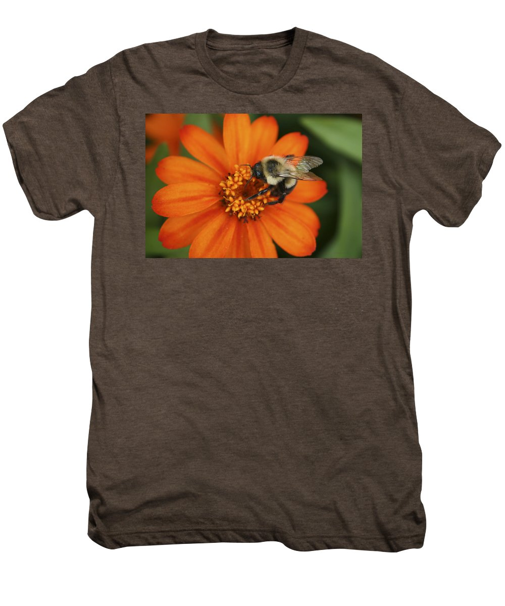 Bee Men's Premium T-Shirt featuring the photograph Bee On Aster by Margie Wildblood