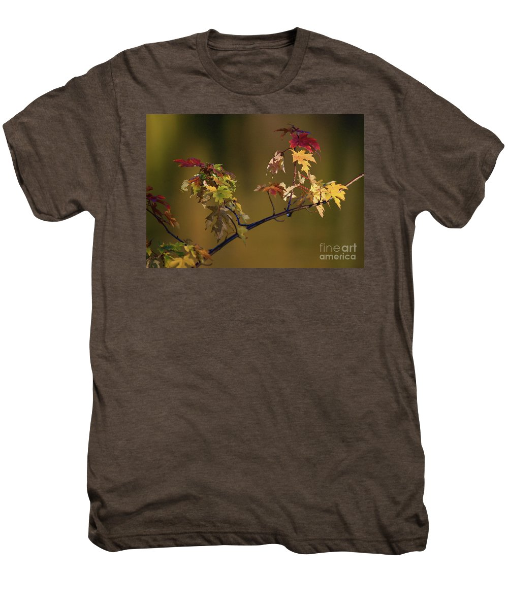 Fall Men's Premium T-Shirt featuring the photograph Color On A Stick by Robert Pearson