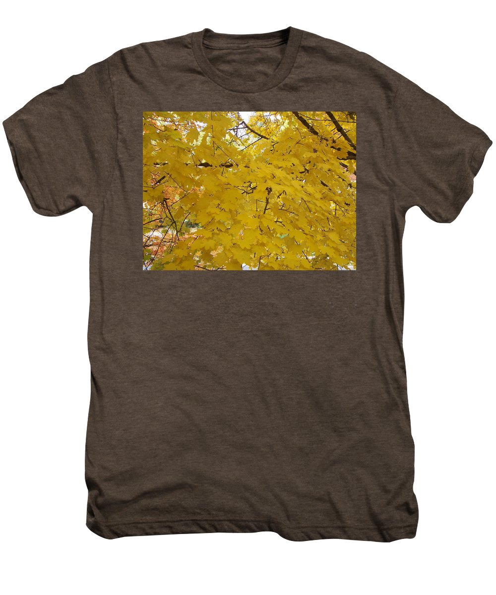 Fall Autum Trees Maple Yellow Men's Premium T-Shirt featuring the photograph Golden Canopy by Karin Dawn Kelshall- Best