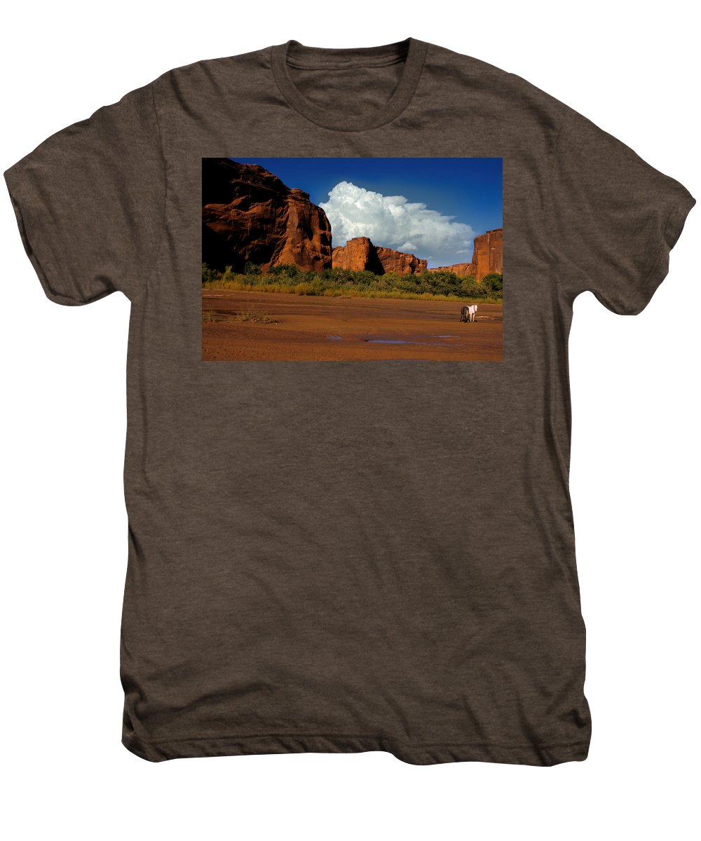 Horses Men's Premium T-Shirt featuring the photograph Indian Ponies In The Canyon by Jerry McElroy