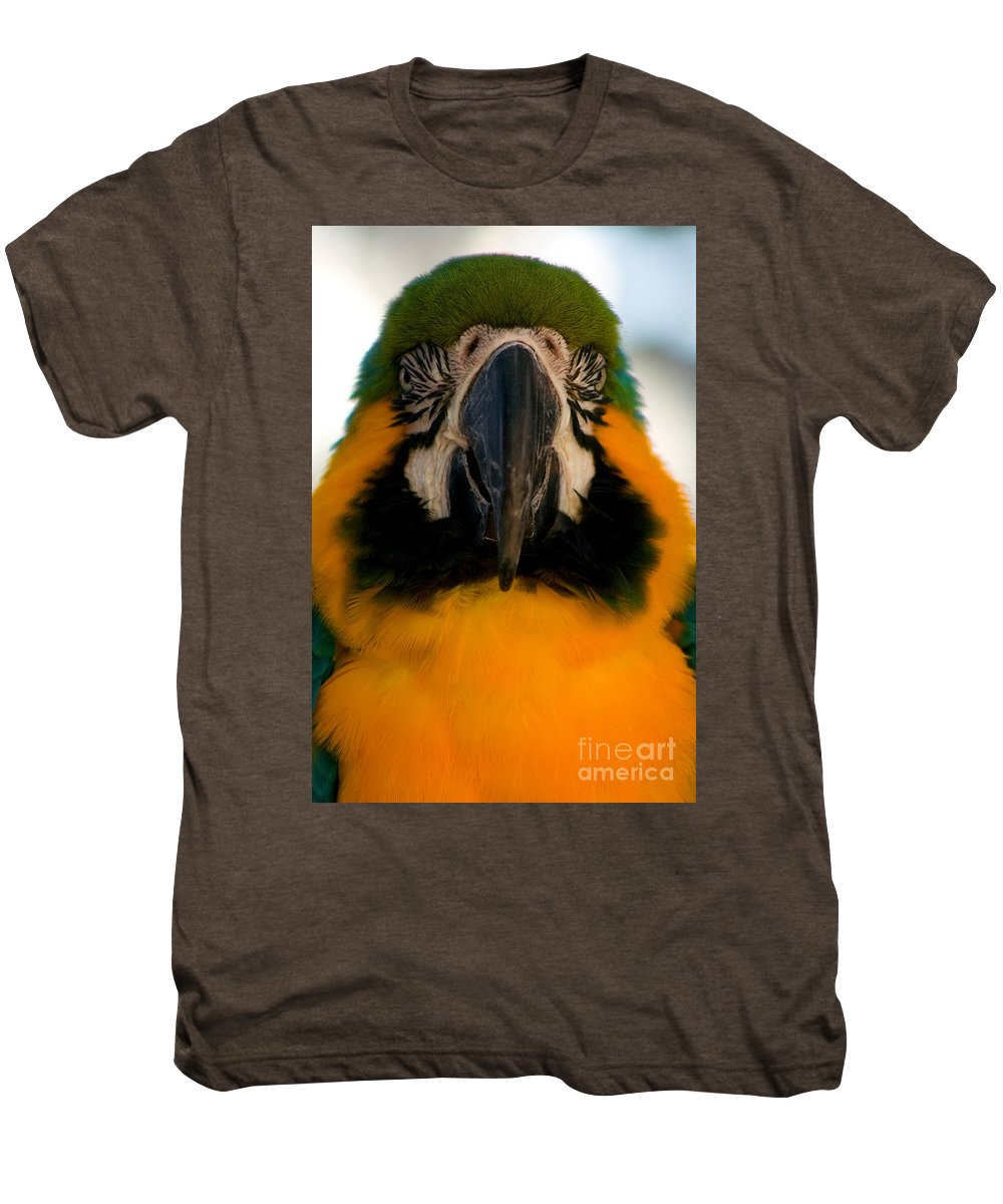 Macaw Men's Premium T-Shirt featuring the photograph Macaw IIi by Thomas Marchessault