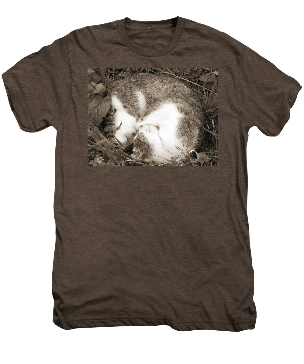 Pets Men's Premium T-Shirt featuring the photograph Sleeping by Daniel Csoka