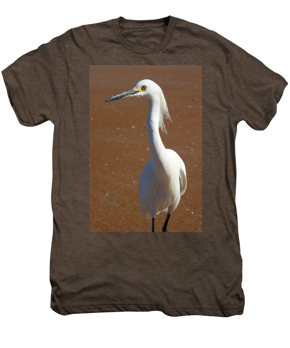Bird Beach Sand White Bright Yellow Curious Egret Long Neck Feather Eye Ocean Men's Premium T-Shirt featuring the photograph Snowy Egret by Andrei Shliakhau