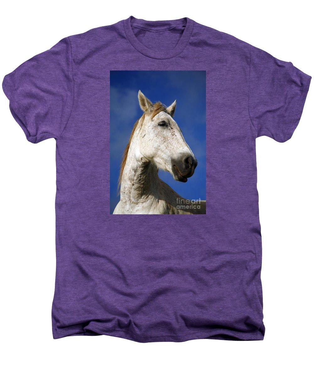 Animals Men's Premium T-Shirt featuring the photograph Horse Portrait by Gaspar Avila