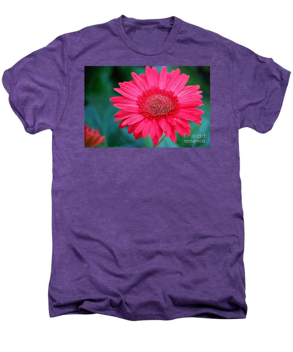 Gerber Daisy Men's Premium T-Shirt featuring the photograph In The Pink by Debbi Granruth