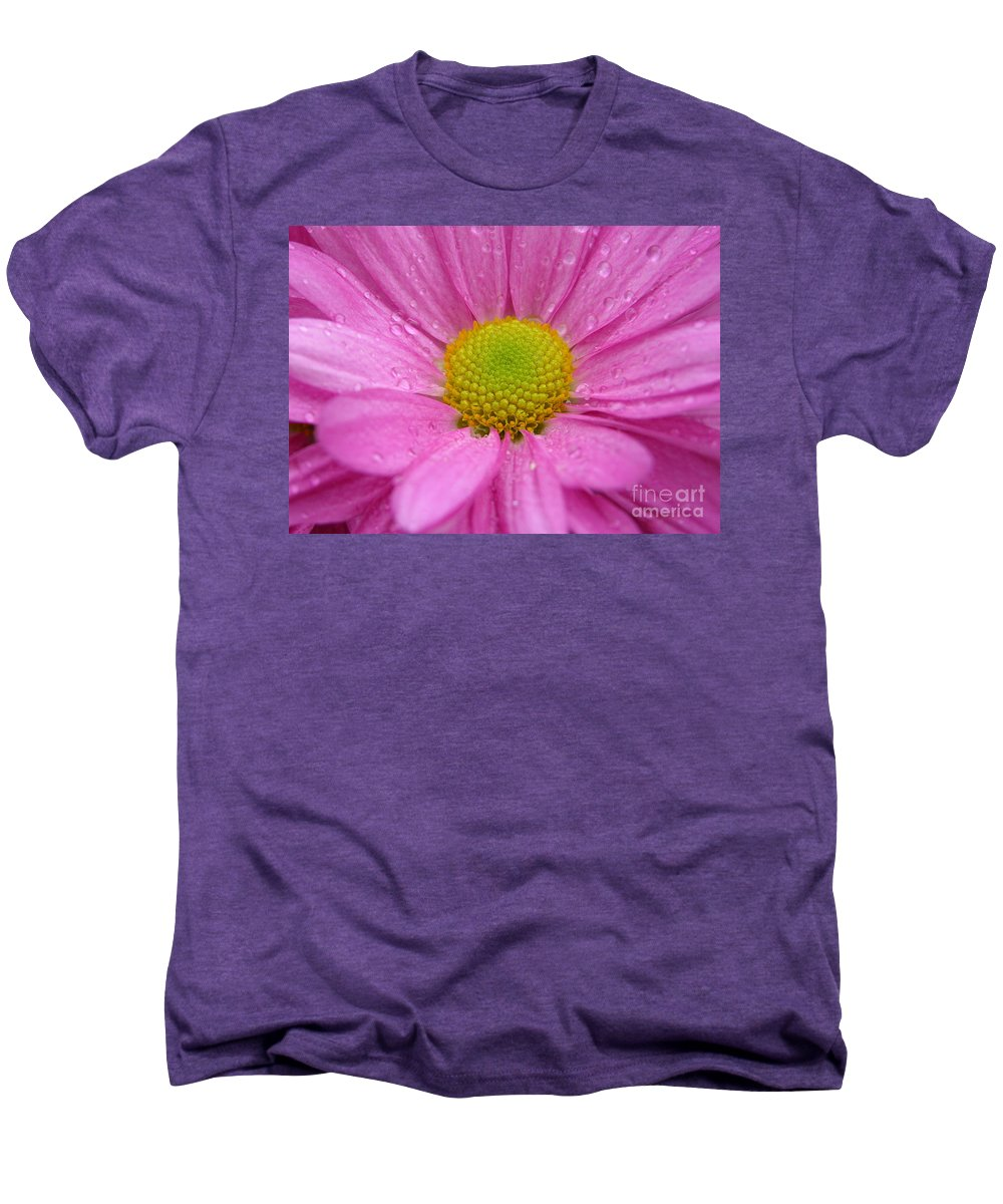 Pink Daisy Men's Premium T-Shirt featuring the photograph Pink Daisy With Raindrops by Carol Groenen