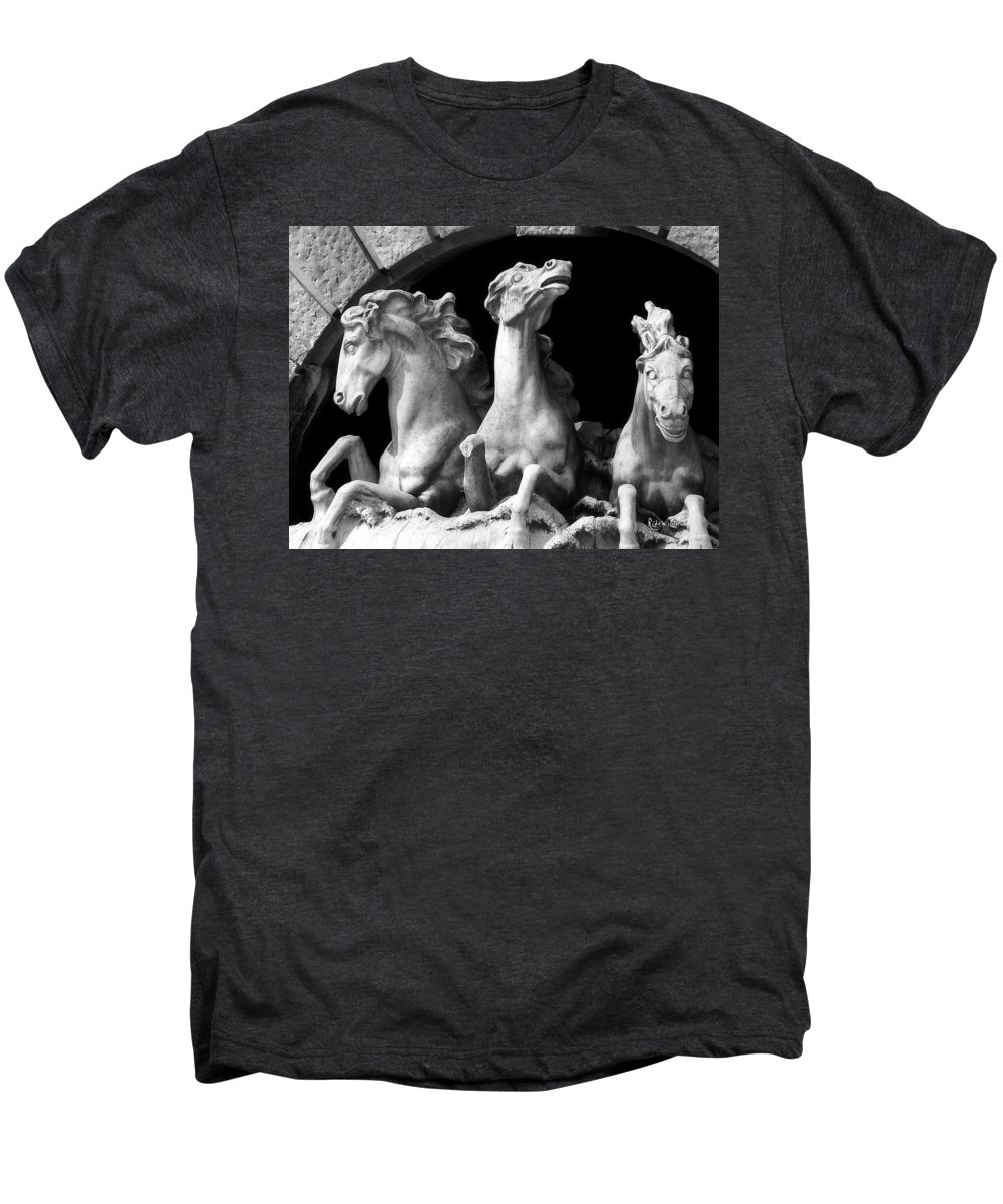 Sculpture Men's Premium T-Shirt featuring the pyrography Almost Perfect by RC DeWinter