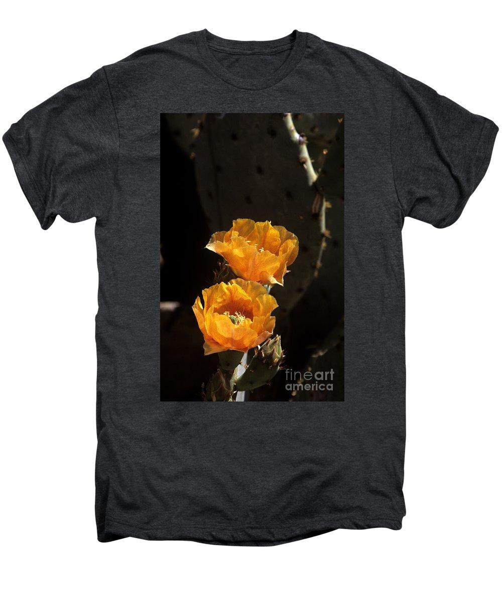 Cactus Men's Premium T-Shirt featuring the photograph Apricot Blossoms by Kathy McClure