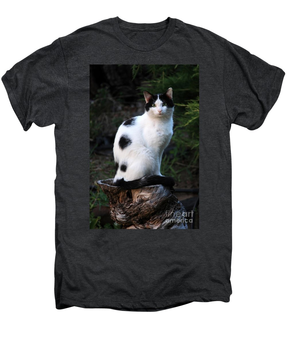 Cat Men's Premium T-Shirt featuring the photograph Black And White Cat On Tree Stump by Carol Groenen