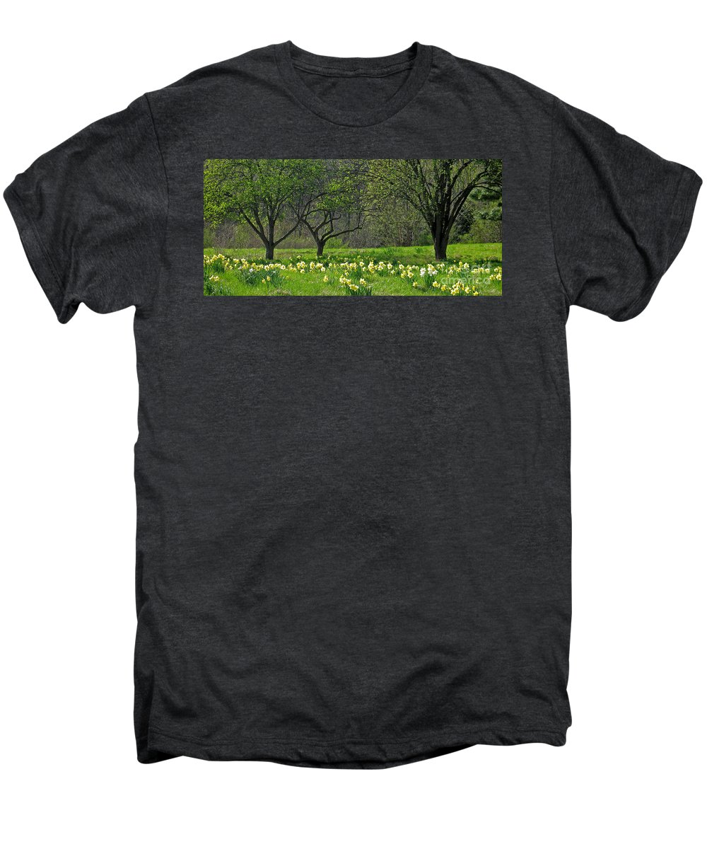 Spring Men's Premium T-Shirt featuring the photograph Daffodil Meadow by Ann Horn