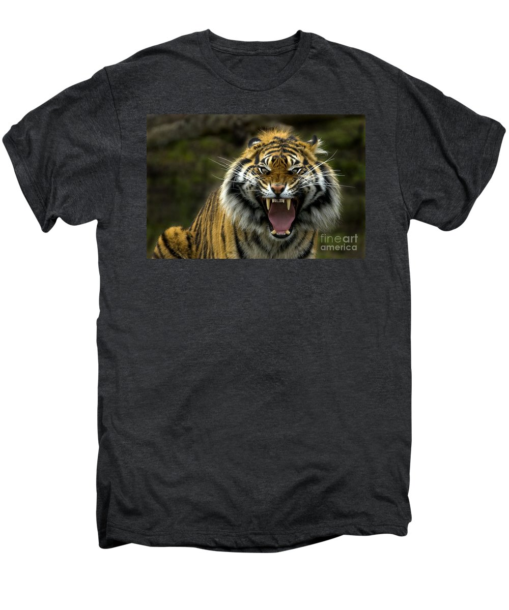 Tiger Men's Premium T-Shirt featuring the photograph Eyes Of The Tiger by Mike Dawson