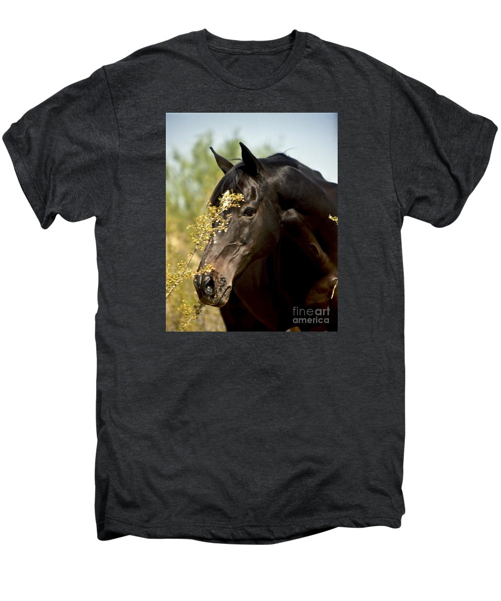 Horse Men's Premium T-Shirt featuring the photograph Portrait Of A Thoroughbred by Kathy McClure