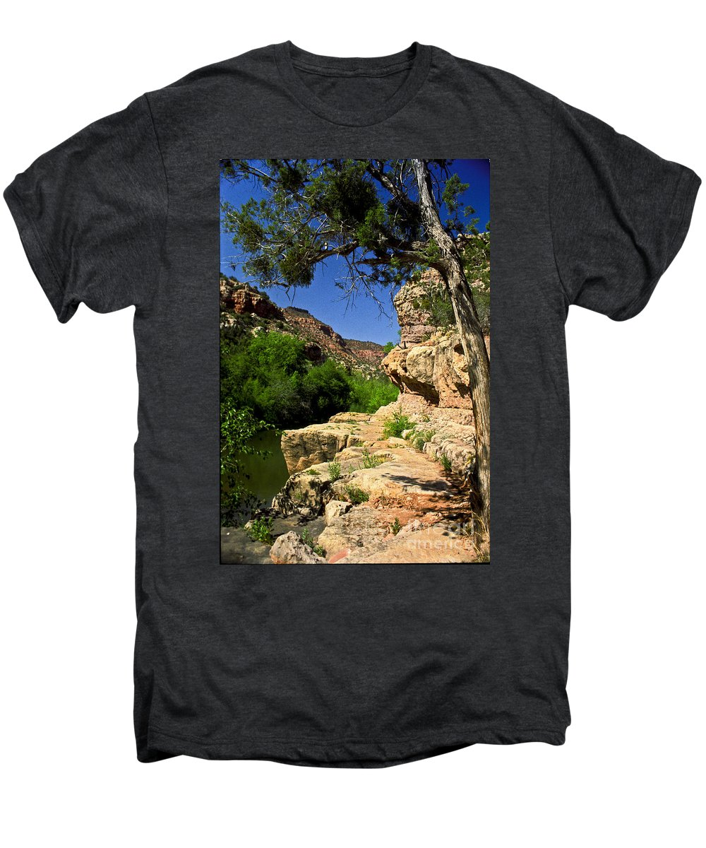 Arizona Men's Premium T-Shirt featuring the photograph Sycamore Canyon by Kathy McClure