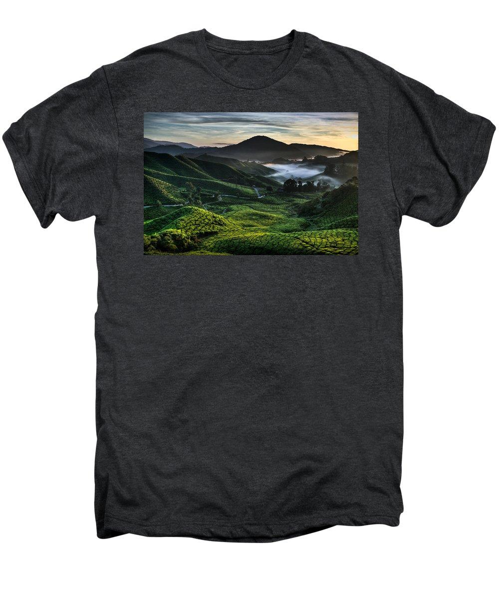 Tea Plantation Men's Premium T-Shirt featuring the photograph Tea Plantation At Dawn by Dave Bowman