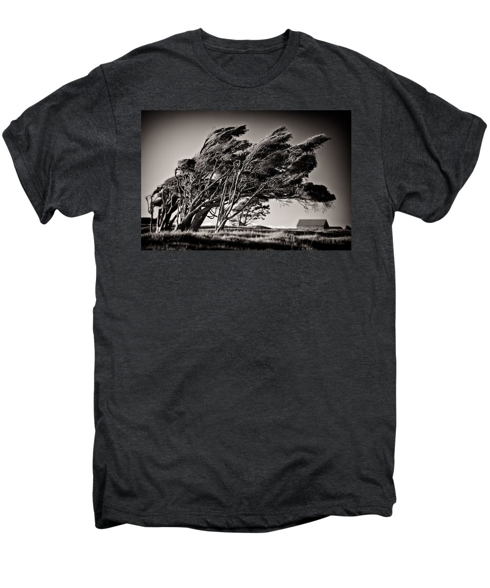 Windswept Trees Men's Premium T-Shirt featuring the photograph Windswept by Dave Bowman
