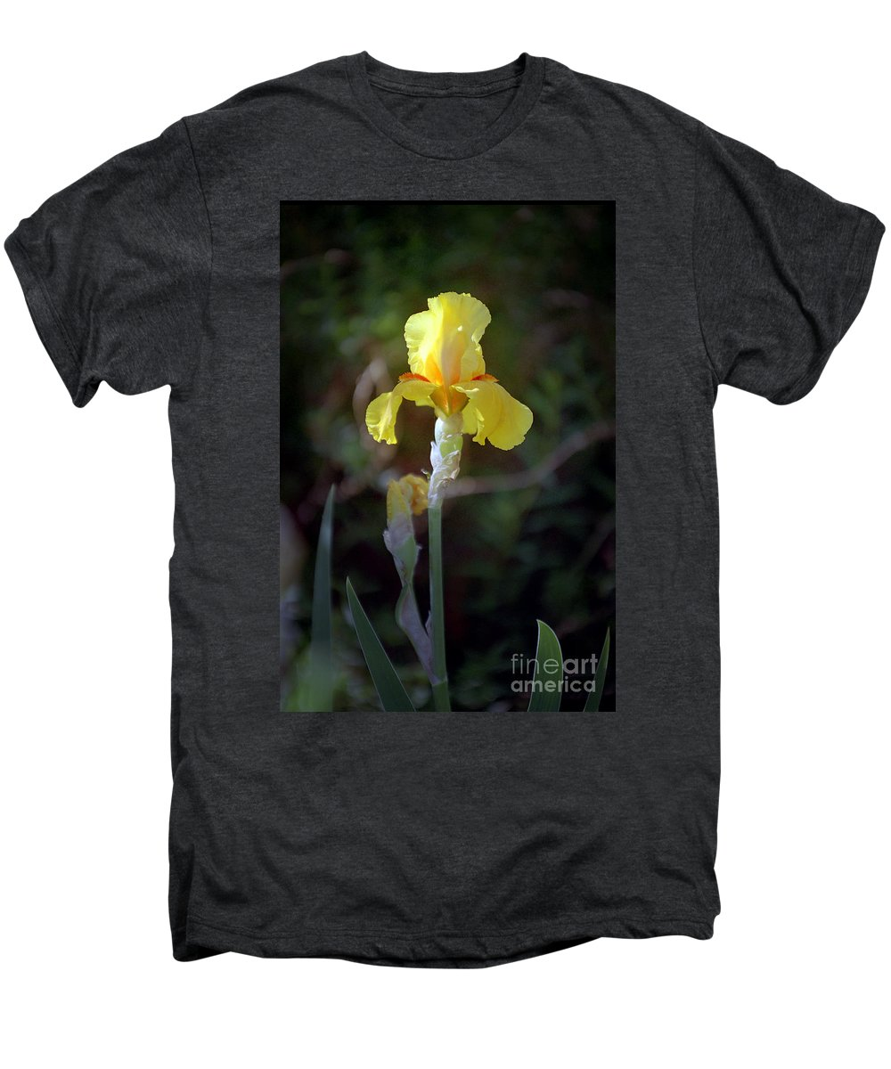 Iris Men's Premium T-Shirt featuring the photograph Yellow Iris by Kathy McClure