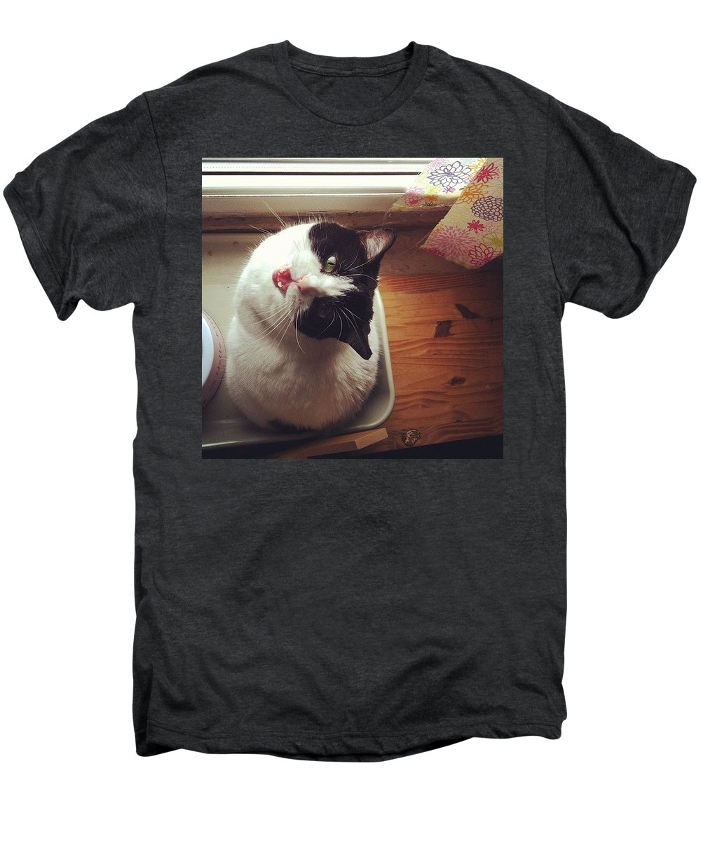Catsofinstagram Men's Premium T-Shirt featuring the photograph the Bowl's Empty! #cat by Katie Cupcakes