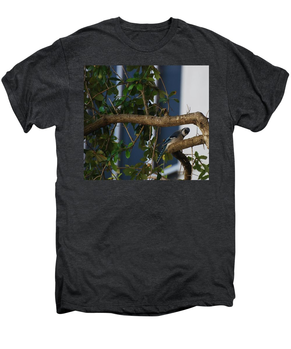 Birds Men's Premium T-Shirt featuring the photograph Blue Bird by Rob Hans