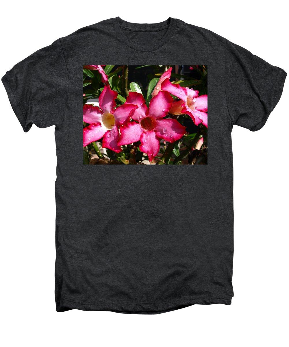 Desert Rose; Desert; Rose; Red; Pink; Flower; Bush; Garden; Florida; Plant; Adenium; Obesum; Africa; Men's Premium T-Shirt featuring the photograph Desert Rose by Allan Hughes