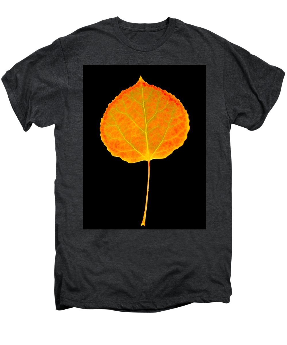 Leaf Men's Premium T-Shirt featuring the photograph Aspen Leaf by Marilyn Hunt