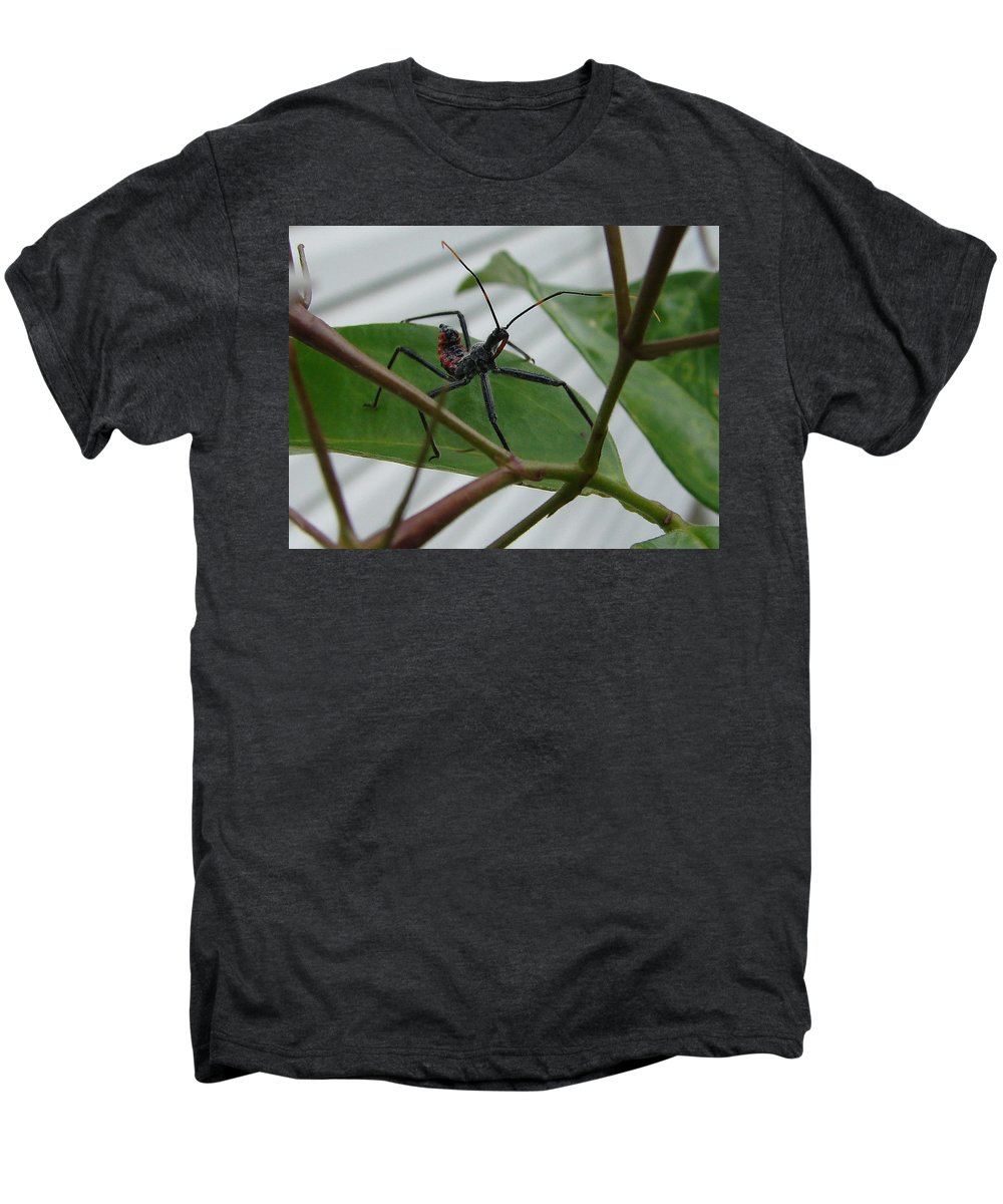 Insect Red Black Green Leaf Men's Premium T-Shirt featuring the photograph Assassin Bug by Luciana Seymour