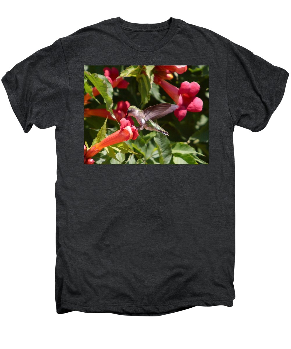 Humming Bird Men's Premium T-Shirt featuring the photograph Asweet Tooth by Robert Pearson