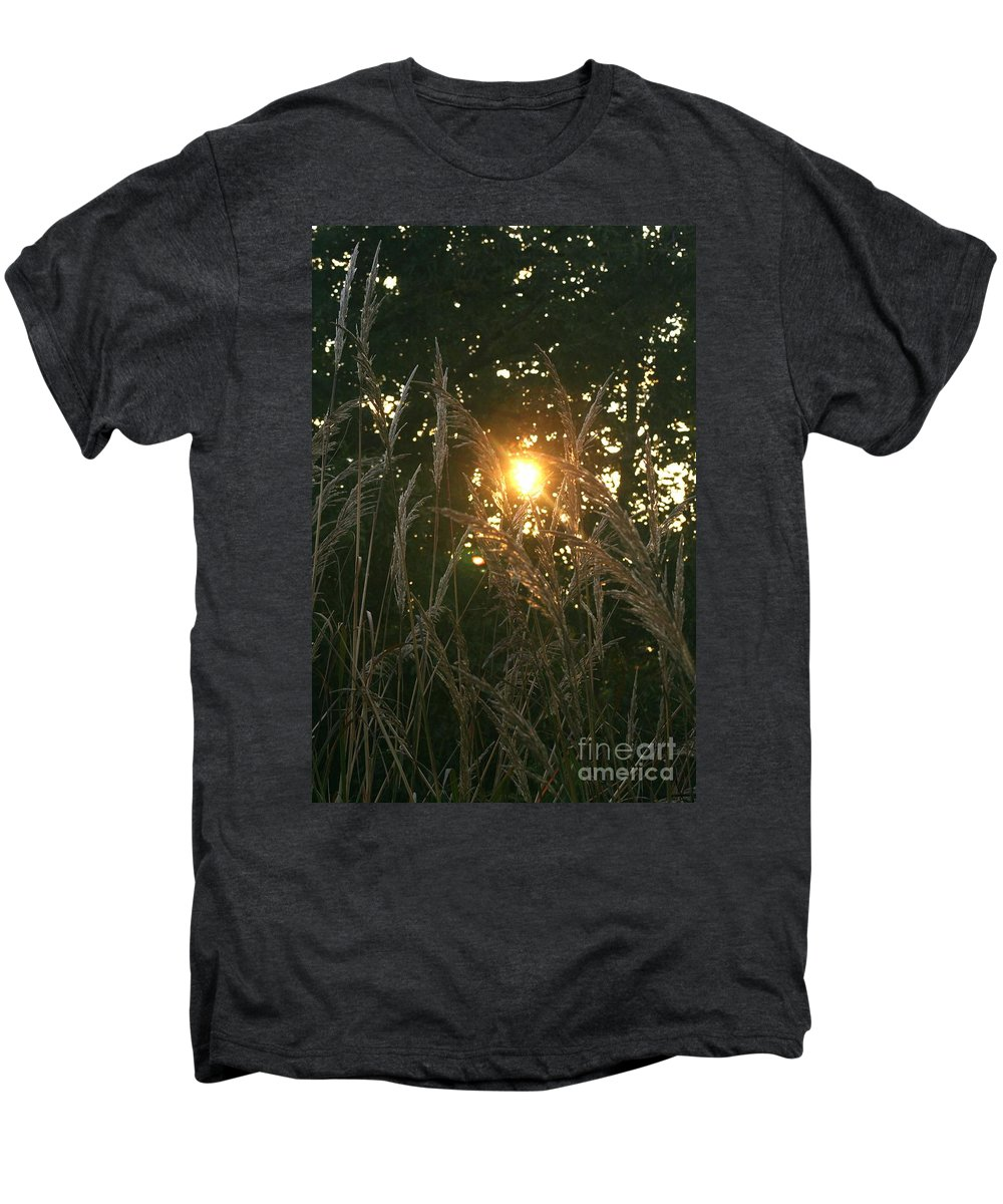 Light Men's Premium T-Shirt featuring the photograph Autumn Grasses In The Morning by Nadine Rippelmeyer