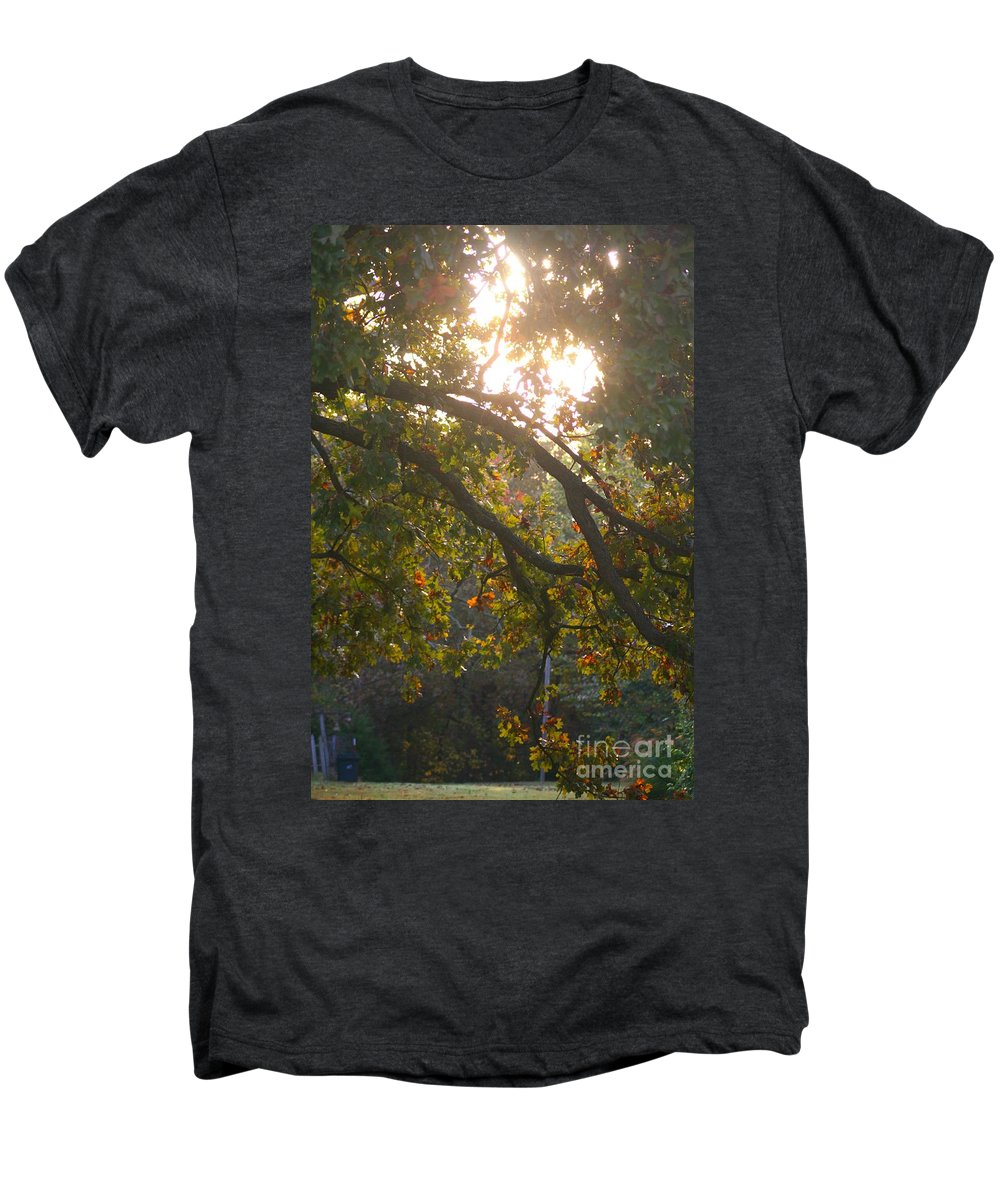 Autumn Men's Premium T-Shirt featuring the photograph Autumn Morning Glow by Nadine Rippelmeyer