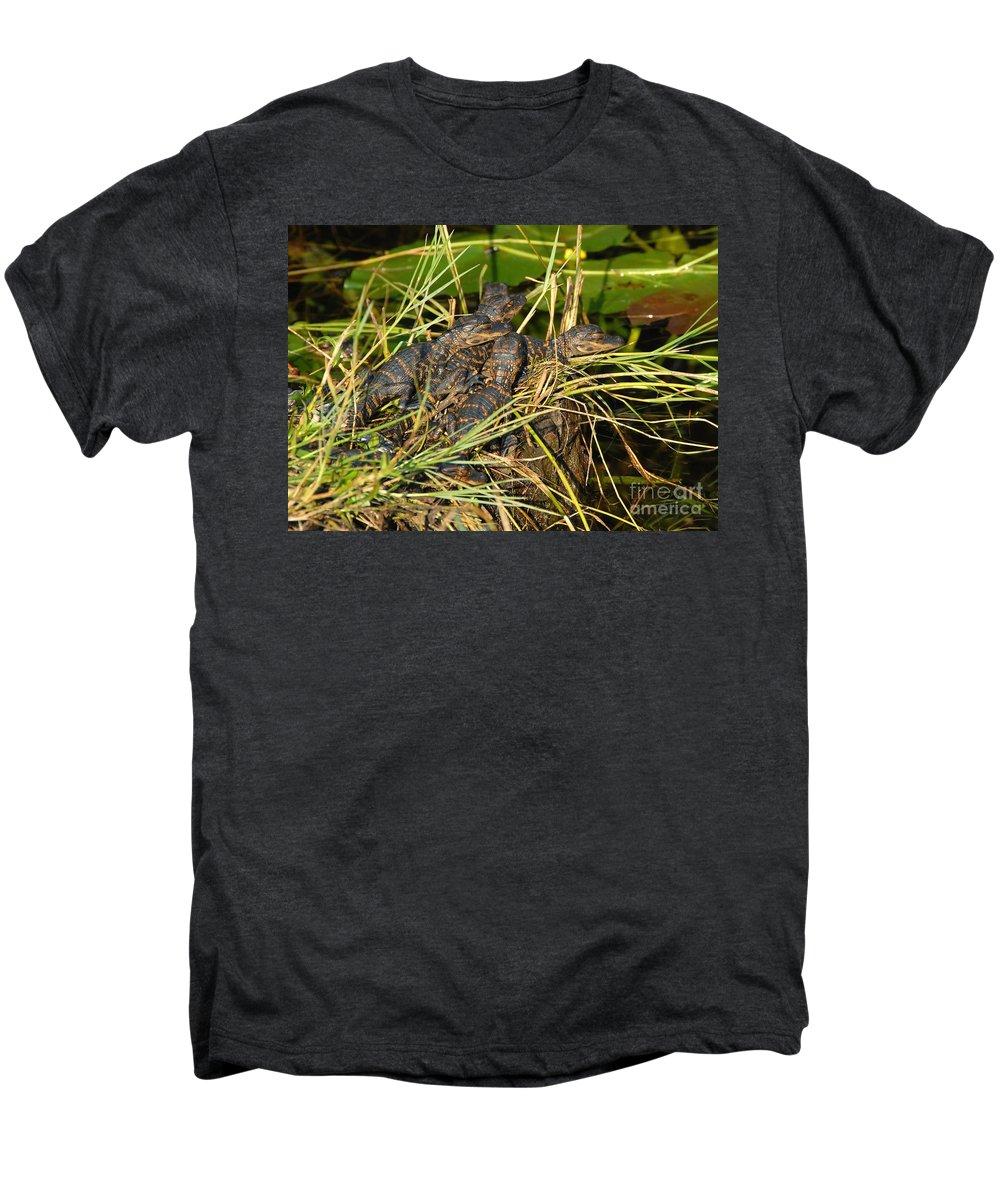 Alligators Men's Premium T-Shirt featuring the photograph Baby Alligators by David Lee Thompson