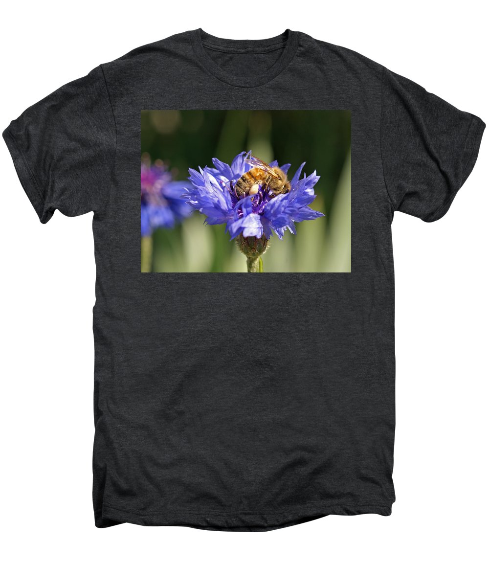 Bee. Flower Men's Premium T-Shirt featuring the photograph Bachelor Button And Bee by Heather Coen