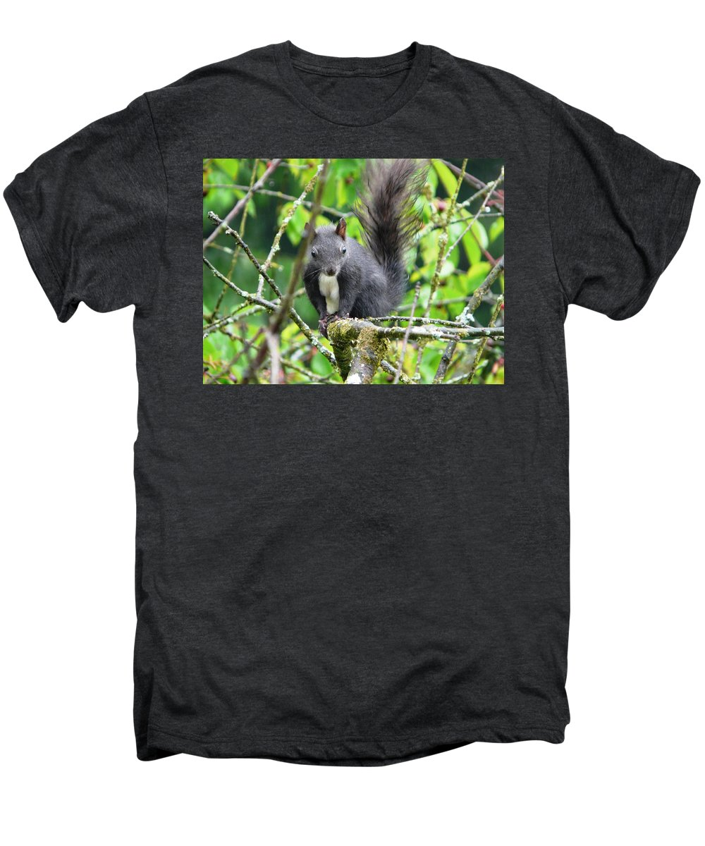 Animal Men's Premium T-Shirt featuring the photograph Black Squirrel In The Cherry Tree by Valerie Ornstein