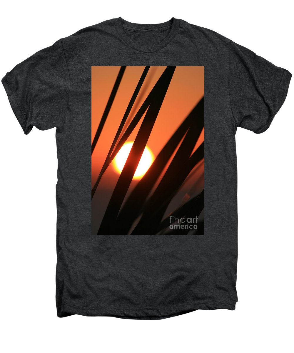 Sun Men's Premium T-Shirt featuring the photograph Blazing Sunset And Grasses by Nadine Rippelmeyer